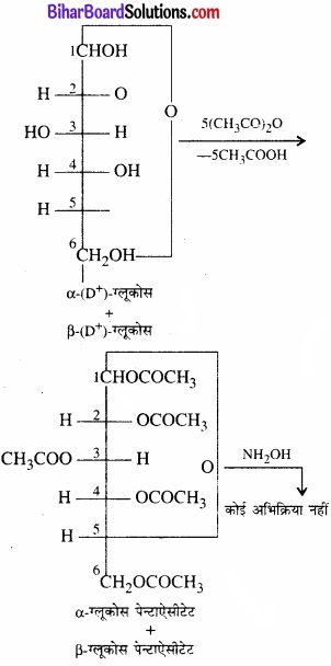 BIhar Board Class 12 Chemistry Chapter 14 जैव-अणु img-2
