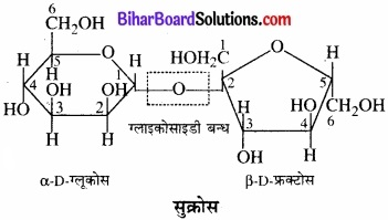 BIhar Board Class 12 Chemistry Chapter 14 जैव-अणु img-5