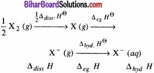 BIhar Board Class 12 Chemistry Chapter 7 p-ब्लॉक के तत्त्व img 11