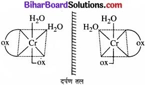 BIhar Board Class 12 Chemistry Chapter 9 उपसहसंयोजन यौगिक img 2