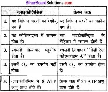 Bihar Board Class 11 Biology Chapter 14 पादप में श्वसन