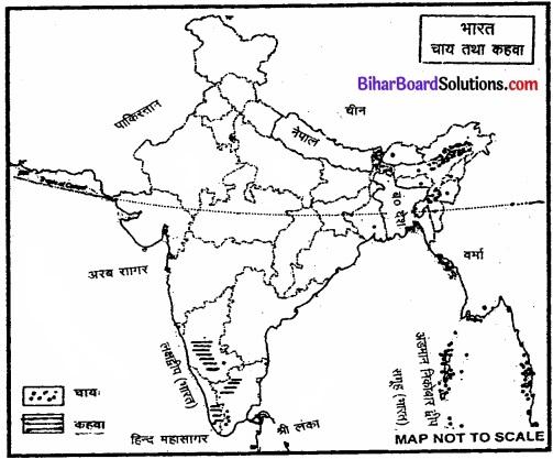 Bihar Board Class 12 Geography Solutions Chapter 5 प्राथमिक क्रियाएँ img 2