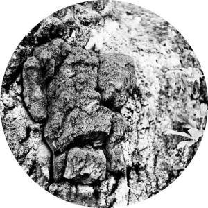 Mava|Nebukat - Polymer - LIIT003 - LIITHELI