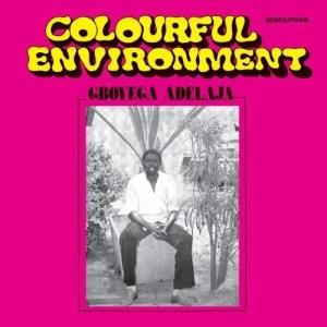 Gboyega Adelaja - Colourful Environment - LIVST006 - LIVINGSTONE STUDIO