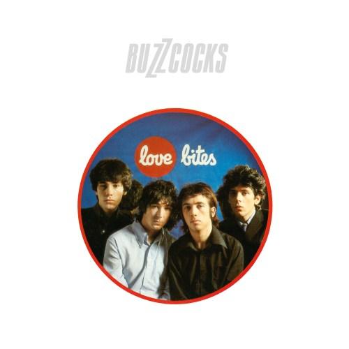 Buzzcocks - Love Bites (White vinyl) - REWIGLP127X - DOMINO