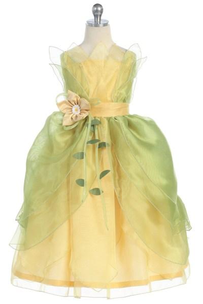 Princess tianainspired dress costume