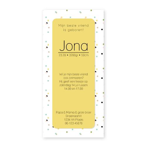 Bij Bis collectie preview geboortekaartje confetti 210x100 achterkant