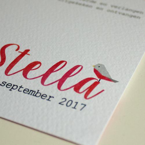 Geboortekaartje Stella - sterrenhemel met sterrenbeeld