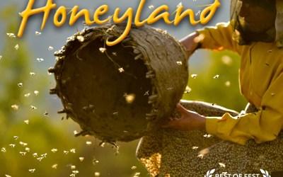 Bijenbaas aanwezig bij vertoning van Honeyland