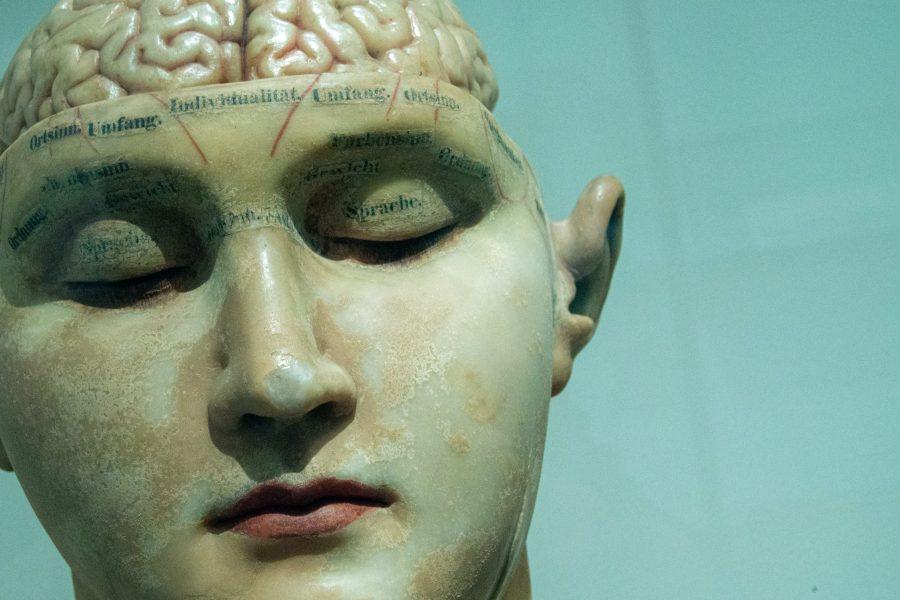 cognitief verminderd functioneren