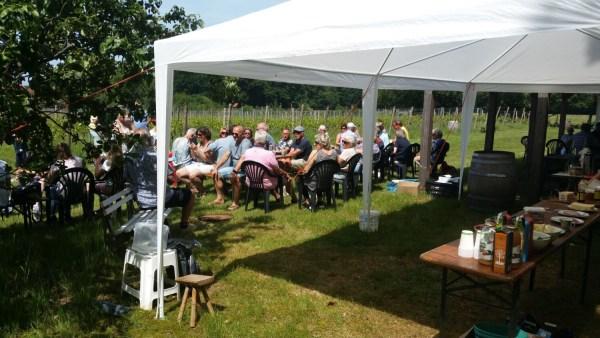 Wagenings Wijngoed - Wijngaard Wageningen