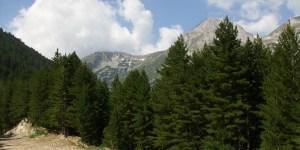 Mountain biking and views