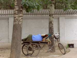 Sleeping on a bike
