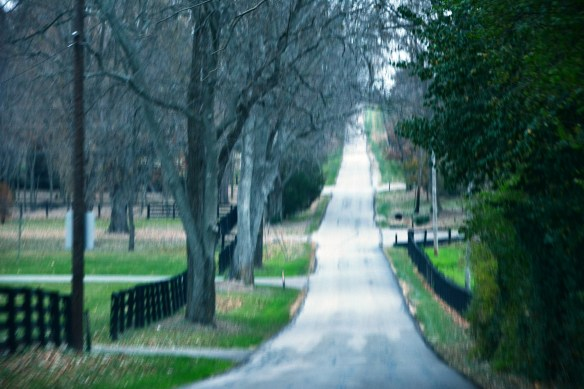Kentucky Lexington Biking