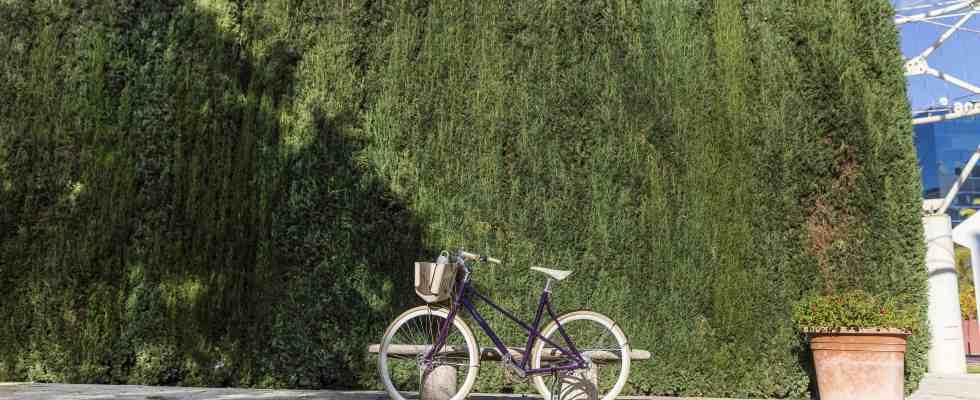 nespresso-cria-bicicleta-feita-de-capsulas-de-cafe