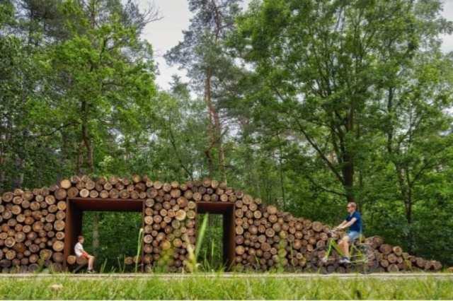 na-belgica-e -possível-atravessar-um-lago-de-bicicleta-e-pedalar-sobre-as-arvores (4)