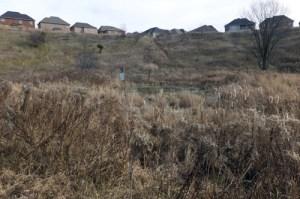 2013 08 Etobicoke Crk Trail TRCA restoration_500