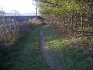 2013 23 Caledon single track at 410 bridge_500