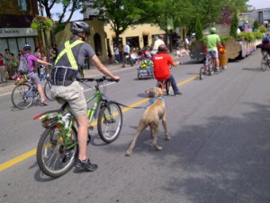 bicycle_friendly_community_parade_500