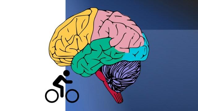Cycling Chronicles Vol 8