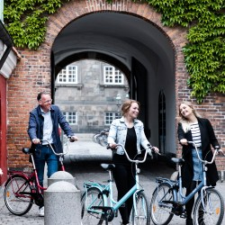 Rent Stylish Bikes