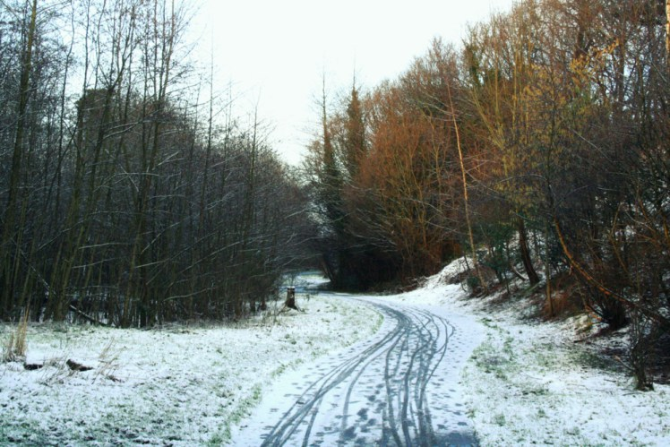 Comber_Greenway_Winter_Bikefast