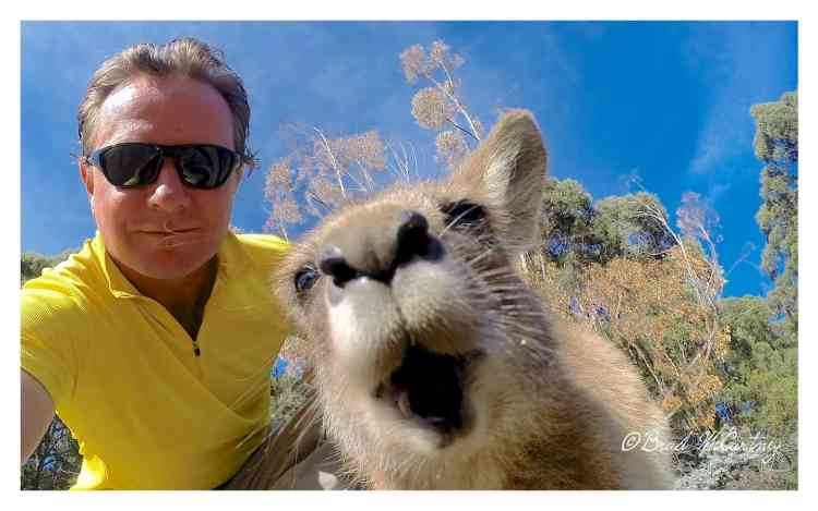 Selfie with a roo