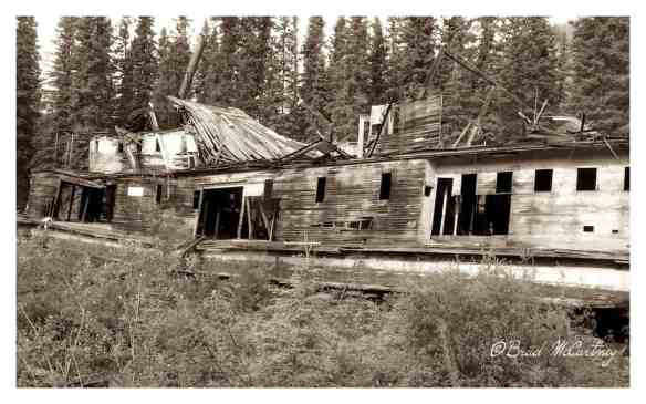 Old steamer abandoned on an Island on the Yukon River
