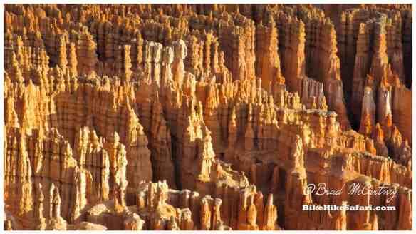 The hoodoos of Bryce Canyon