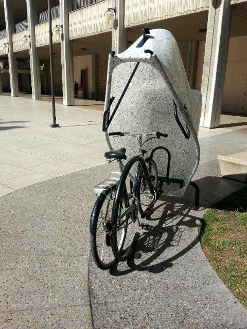 bike-lid