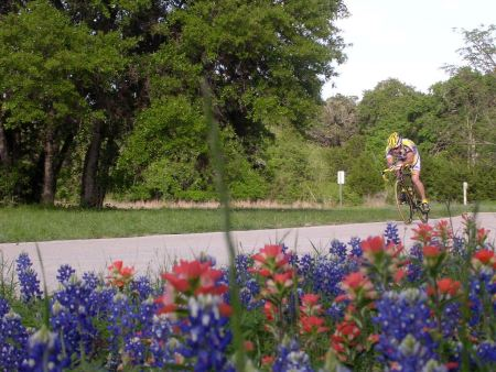Bluebonnets and Indian Paintbrush set off a MAMIL along a back stretch of the Veloway.