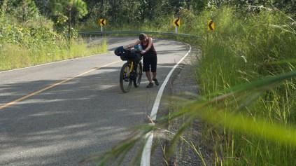 Dasha the Bikepusher