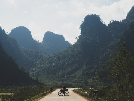 Vietnamese limestone towers overlayed by jungle