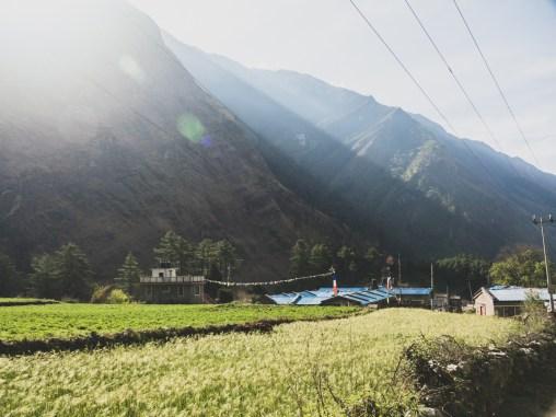 The field in morning sun. Ghasa, Nepal