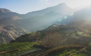 Políčka v ranním slunci. Khingar, Nepál