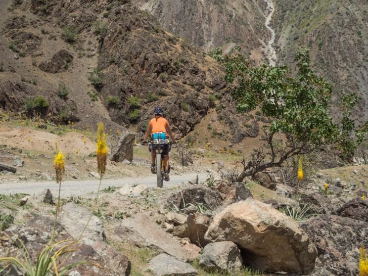 Dasha and flowers. Tajikistan and Afganistan Frontier