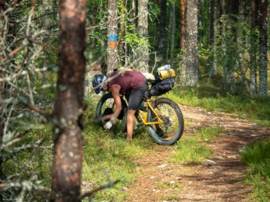 Dasha's most favourite trail activity. Berry picking. Mäntyharju-Repovesi mtb trail, Finland