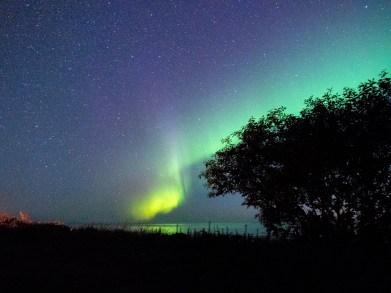 Aurora Borealis. Hadel, Norway