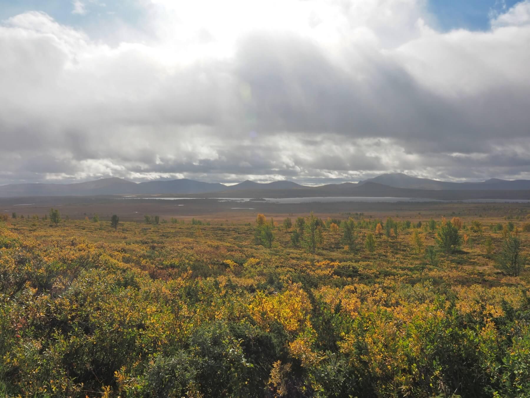 Náhorní plošina mezi národními parky Jotunheimen a Langsua.