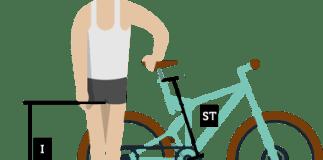 sizing mountain bike