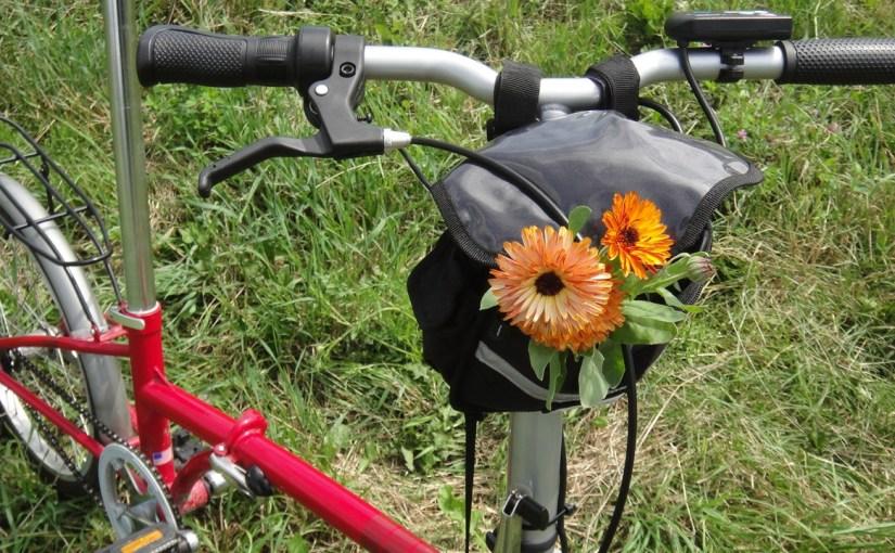 Minimalist Cargo Biking