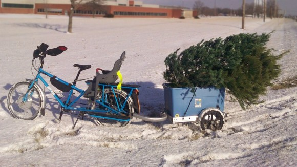 Christmas tree recycling 2010
