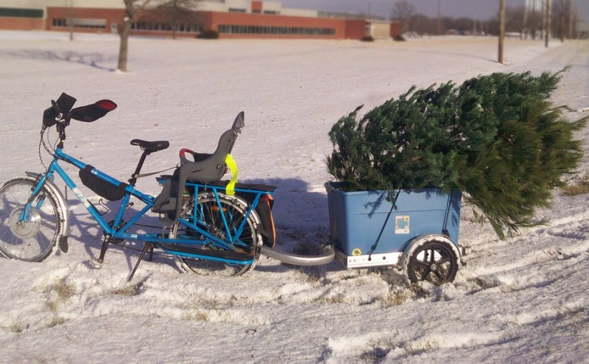 Christmas tree recycling, 2010