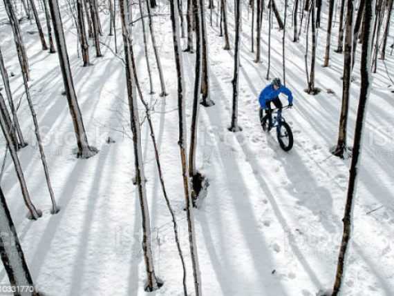 Mountain Bikes - Buying Guide-Downhill-BR