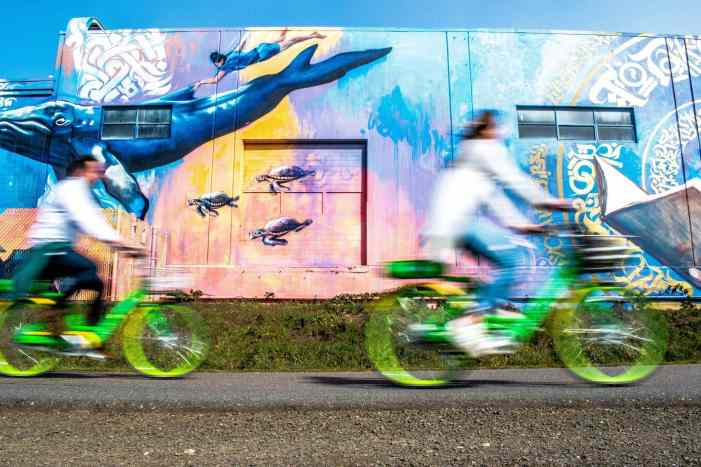 Bike commuters zoom by a mural of a whale and seat turtles on the Burke Gilman trail with their Lime bikeshare bikes.