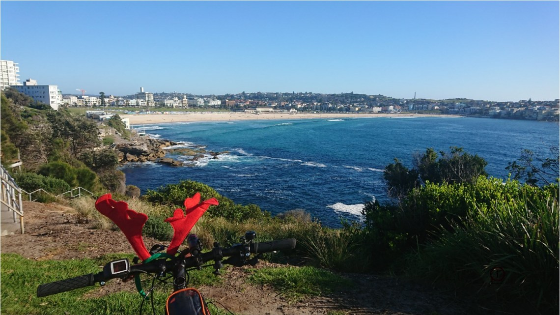 Merry Christmas from the Bondi to Clovelly Cycleway