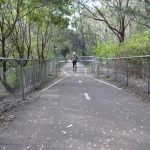 Near the southern end of the Fernleigh Rail Trail