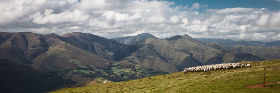 Crossing the Pyrenees to Roncesvalles