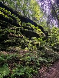 Kočičina valley