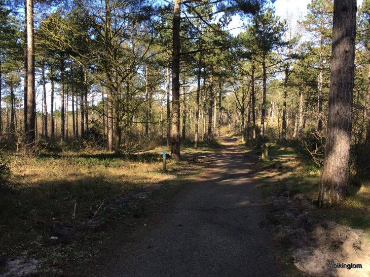 Radfahren Texel Niederlande bikingtom